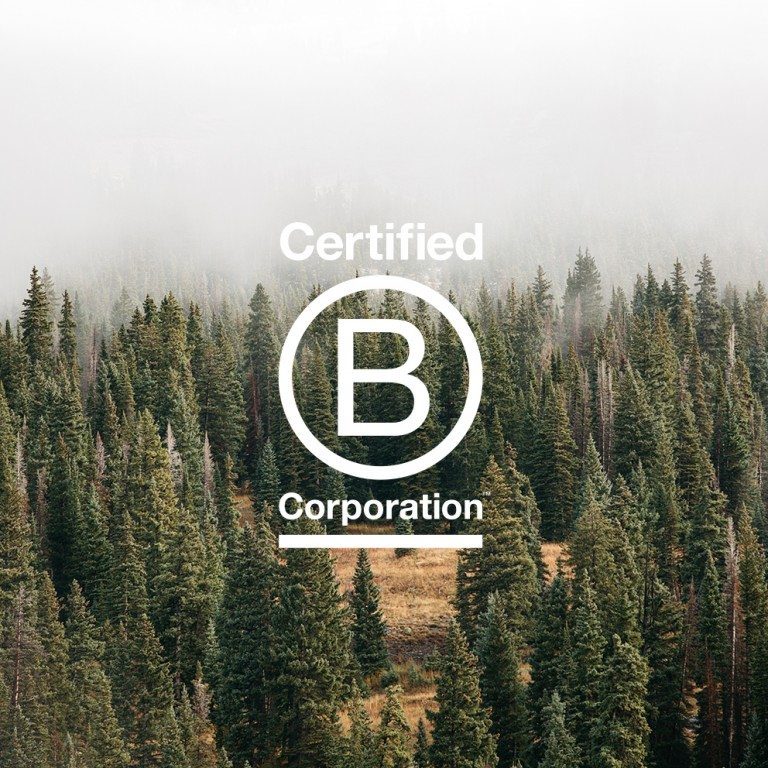 B corp logo on image