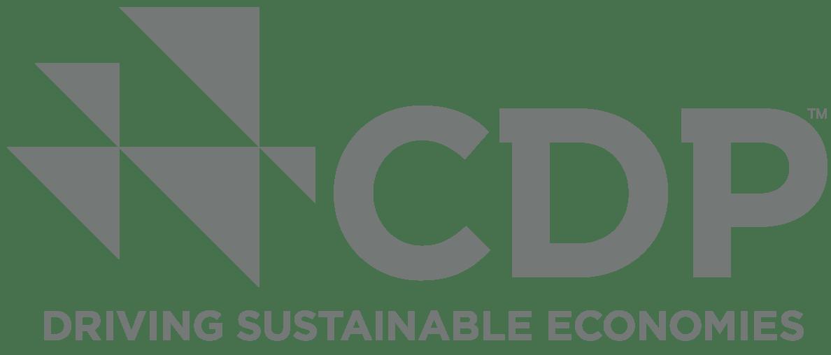 Driving Sustainable Economies logo